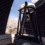 桜と星空の共演@ルナ天文台