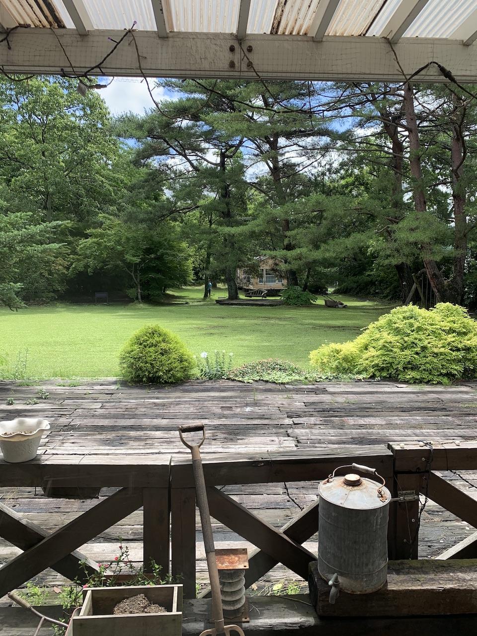 7月8日(水)の森のアトリエ、青空も見える